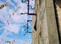Batteria costiera Punta Chiappa