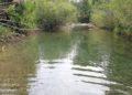 il fiume cornia