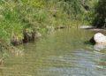 la limpida acqua del pozzo di serraiola