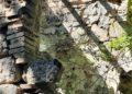Accesso alla vasca de le Terme abbandonate di San Michele alle Formiche
