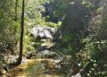La natura lussureggiante al pozzo della campana