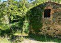 Rudere a le Terme abbandonate di San Michele alle Formiche