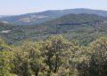 l'Abbazia e le Terme abbandonate di San Michele alle Formiche