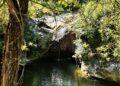La natura selvaggia alle Terme abbandonate di San Michele alle Formiche