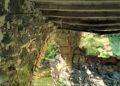 Pericolo a le Terme abbandonate di San Michele alle Formiche